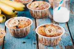 Chocolate chips banana muffins. On rustic background royalty free stock image