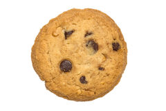 Chocolate chips cookie isolated white background Stock Image