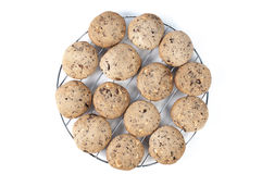 Chocolate chips cookies. Freshly baked chocolate chips cookies on cooling tray stock photos