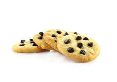 Chocolate chips cookies isolated on white background. Stock Photography