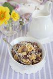 Chocolate chips granola Royalty Free Stock Photography
