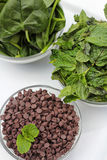 Chocolate chips and mint spinach vertical on top Stock Photography