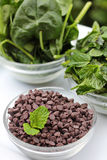 Chocolate chips and mint spinach vertical Stock Photography