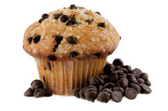 Chocolate chips muffin. Isolated on white background Royalty Free Stock Photo