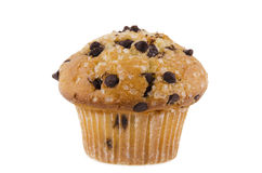 Chocolate chips muffin. Isolated on white background Stock Image