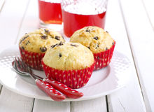 Chocolate chips muffins Stock Photos