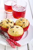 Chocolate chips muffins Royalty Free Stock Image