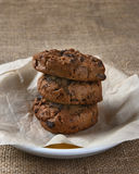 Chocolate Chocolate Chip Cookie Closeup Royalty Free Stock Images