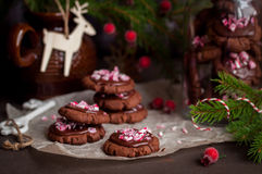 Chocolate Christmas Cookies with Crushed Candy Cane stock photos