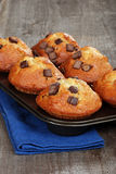 Chocolate chunk banana muffins Royalty Free Stock Photo