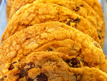 Chocolate Chunk Cookie Royalty Free Stock Photography