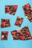Chocolate chunks with strawberry, raspberry and hazelnuts Stock Photos