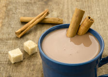 Chocolate with cinnamon stick. Hot chocolate with cinnamon stick Stock Photos