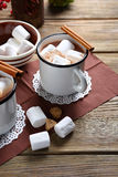 Chocolate with cinnamon in a white cup Stock Photos