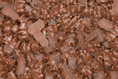 Chocolate Coated Gummy Bear Candy.  Royalty Free Stock Photo