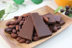 Chocolate and cocoa bean. I rode chocolate and cocoa bean on a plate Royalty Free Stock Photos