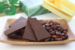 Chocolate and cocoa bean. I rode chocolate and cocoa bean on a plate Stock Images