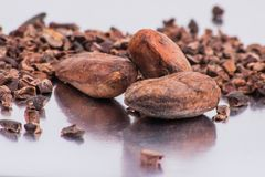 Chocolate cocoa beans isolated on white background Royalty Free Stock Photo