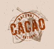 Chocolate cocoa beans. With stamp vector illustration Stock Images