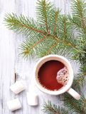 Chocolate or cocoa drink with marshmallows in a Christmas cup on the background of spruce Stock Image
