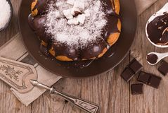 Chocolate coconut cake. royalty free stock images