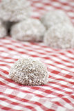 Chocolate and coconut covered marshmallow Stock Images