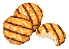 Chocolate Coconut Macaroon Biscuits Stock Image