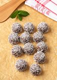 Chocolate coconut snowball cookies Stock Photography