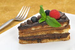 Chocolate and coffee cake Stock Images