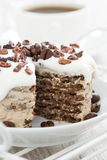Chocolate coffee cake with icing decorated with cocoa beans Stock Photos
