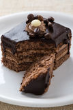 Chocolate and coffee cake Royalty Free Stock Images