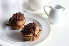 Chocolate-Coffee Muffin Royalty Free Stock Photography
