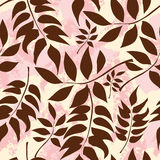 Chocolate Colored Leaves On A Yellow Pink Background Royalty Free Stock Photos