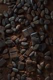 Chocolate com os feijões da American National Standard do pó de cacau Imagem de Stock