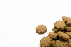 Chocolate cookie. On the white background Royalty Free Stock Photography