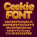 Chocolate cookie alphabet font. Uppercase and lowercase dessert letters. Letters, numbers and symbols with chocolate chips. Stock vector illustration vector illustration