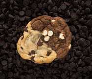 Chocolate cookie on chips Royalty Free Stock Photos