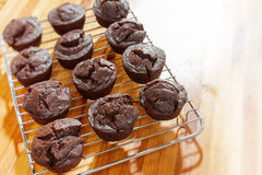 Chocolate cookie tray Stock Images