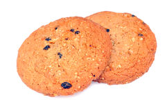 Chocolate cookies Royalty Free Stock Images
