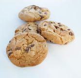 Chocolate cookies Royalty Free Stock Photography