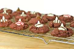 Chocolate cookies with candy Royalty Free Stock Photo