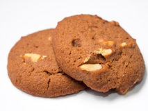 Chocolate cookies Royalty Free Stock Photo
