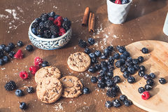 Chocolate cookies with fores berries Stock Images
