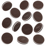 Chocolate Cookies Isolated on White Background Royalty Free Stock Images