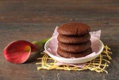 Chocolate cookies and milk Stock Photos
