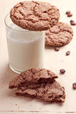 Chocolate cookies with a milk Stock Image