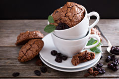 Chocolate cookies stacked in coffee cups Royalty Free Stock Photography