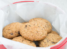 Chocolate cookies in a tin jar Royalty Free Stock Images