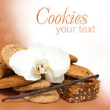 Chocolate cookies and vanilla spice Stock Images