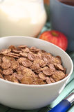 Chocolate Corn Flakes Royalty Free Stock Photos